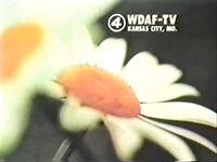 Wdaf74id