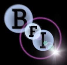 Bfi 2006