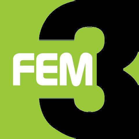 File:FEM3 logo.png