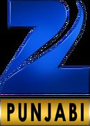 Zee Punjabi 2011