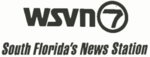 WSVN South Florida's News Station