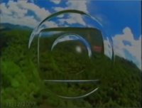 Globo Floresta