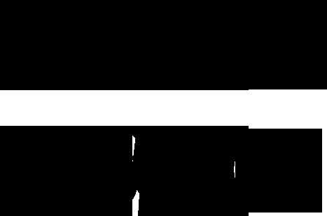 Srgssr1980