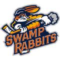 Swamp rabbits logo detail