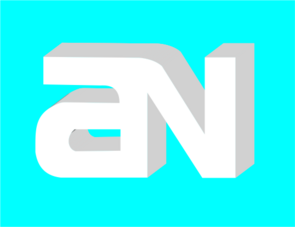 Amnews2010