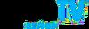Logo TV 2013