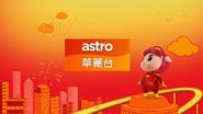Astro Wah Lai Toi 2019 - CNY ID