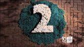 BBC2NI-2014-ID-2AT50-GARDEN-1-4
