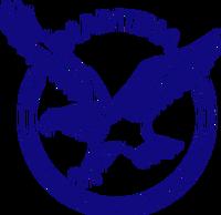 Namibia-National-Cricket-Team-Logo
