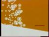 ScreenShot-VideoID-90MaFLloxeY-TimeS-3