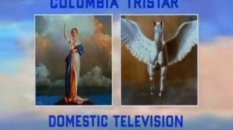 Columbia TriStar Domestic Television logo (2001-B)