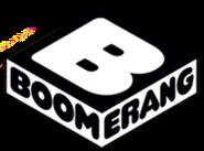 Fde20-boomerang