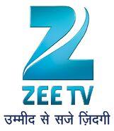 Zeetv-2011