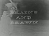 --File-Brains and Brawn logo.jpg-center-300px--