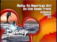 DisneyDolphins2003