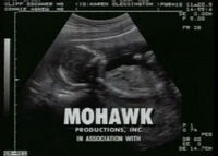 Mohawk Productions B&W Logo