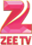 Zee TV Russia 2014