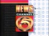 WEWS Logo 1996 NewsChannel 5-2-