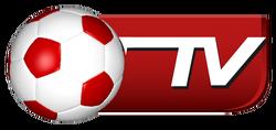 Bóng Đá TV (2009-2017)