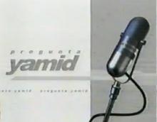 PreguntaYamid2004