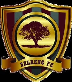 Salaeng FC 2013