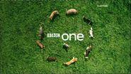 BBCOneDogDisplay2008