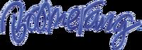 Boomerang TM Logo 2012