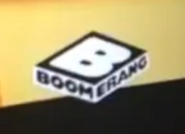 NewBoomerangScreenBug