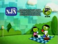 PBSKidsPicnic2008