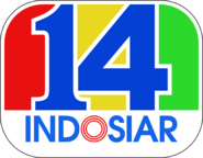 14 Tahun Indosiar