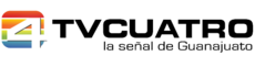 TV4 2008-2009
