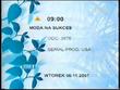 TVP1 2006-2010 schedule ident