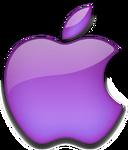 Apple 2001 purple