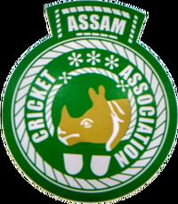 Logo of Assam Cricket Association