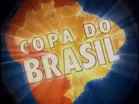 Copa do Brasil 2005