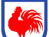 Sydney Roosters/Other