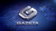 Gazeta-vht-logo-2011