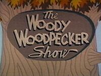 Woodywoodpecker60s