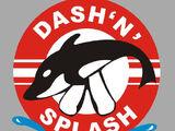 Dash n Splash Aqua Park