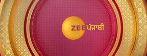 Zee Punjabi cover image