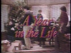 Year in the Life II