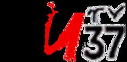 NUTV 37 Logo 1999