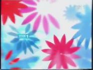 TVP1 2004-2010 (16)