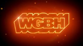 WGBH 2008