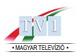 Mtv1 logo 89