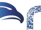 RTV (Indonesia)/Logo Variations