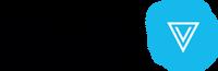 Viacom Velocity International Logo