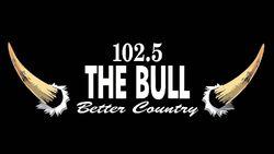 WDXB 102.5 The Bull