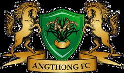 Angthong FC 2010