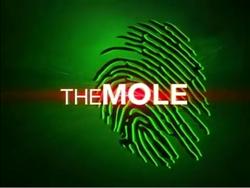 The Mole 2008